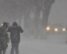 В Ярославской области ожидается усиление ветра и метель