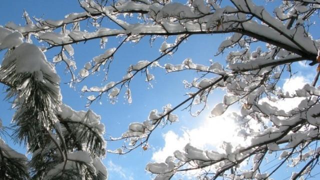 zima_poteplenie