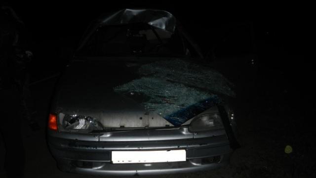 Два человека пострадали в результате ДТП с лосём в Костроме