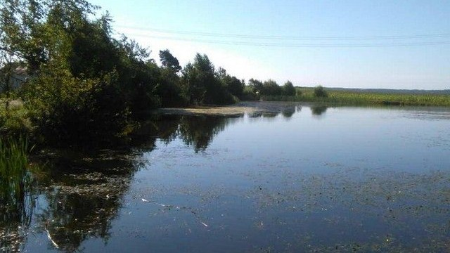 Мать двух детей погибла на реке Днепр в Белоруссии