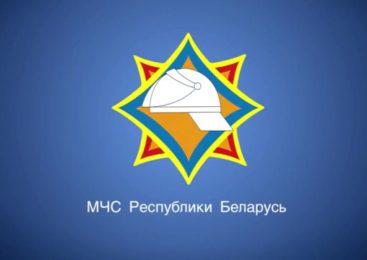В Республике Беларусь возведена понтонная переправа через реку Припять