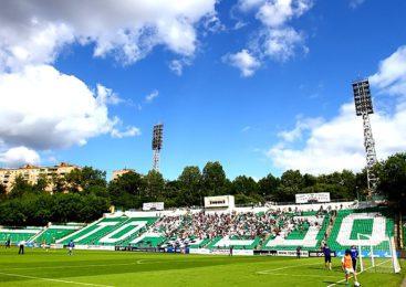 Елена Еленцева рассказала о настоящем и будущем футбольного клуба «Торпедо»